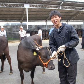 日頃は乳牛部で実学