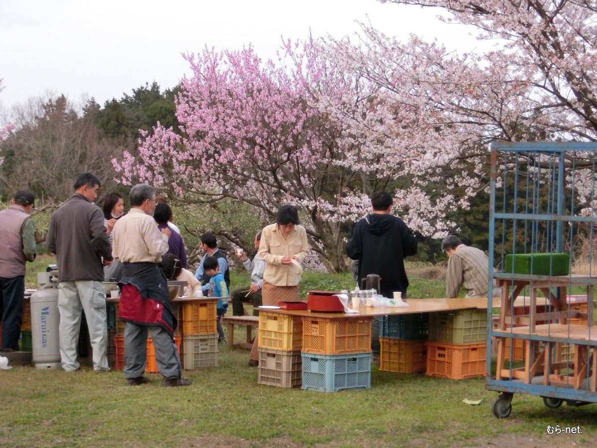4/8【美里】お花見