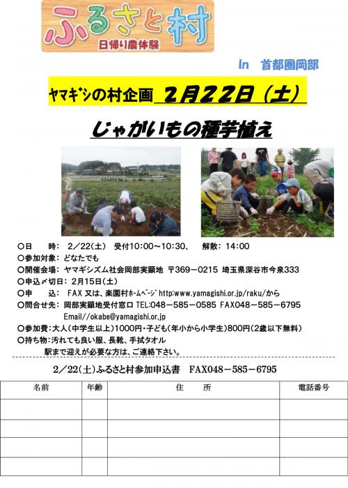 20140222ふるさと村ちらしじゃが芋の種芋植え