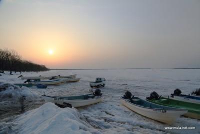 朝の風蓮湖