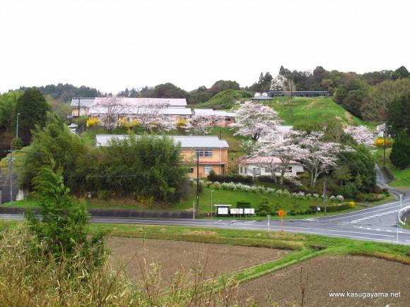 阿山は花盛り 右上の三角屋根が東屋