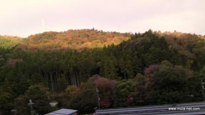 船南Gから見た朝焼けです。 船南Gは三方を山に囲まれた少し小高い所にあり日の出、日の入りが遅い所です。 今は山々の紅葉が日々変わりつつあり、晴れなら晴れの、雨なら雨の情景を楽しませてもらってます◆東度千鶴代(船南)