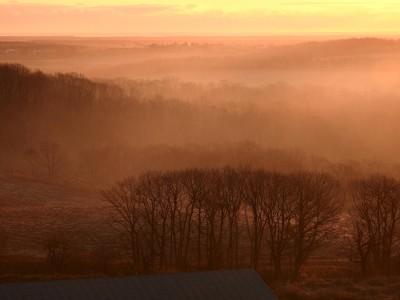 朝の牧草地