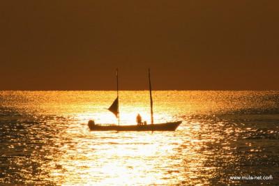打たせ網漁(縞エビ漁