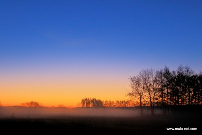 牧場の朝焼け