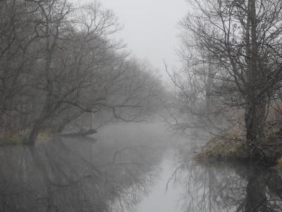 ヤウシュベツ川の朝