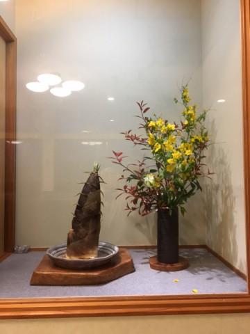 桜の花びらを散らす雨の後に‼️ 一志 犬飼勝宏