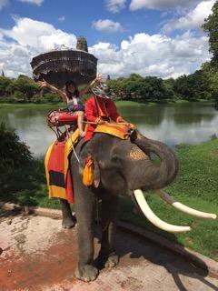 念願の象に乗れて、ご満悦!これでまた、私の夢が1つ叶いました!!