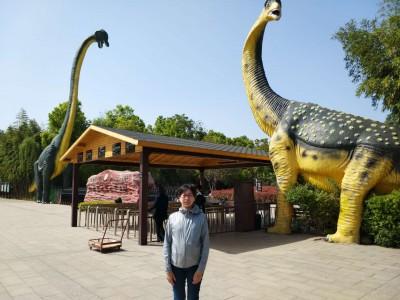 西峡県の観光地恐竜博物館。
