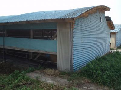 鶏舎大屋根 上部と下部で曲率が異なっている
