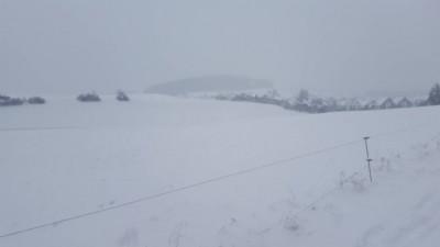 雪です。散歩に出てるけど 疲れるー