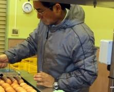 内部川選卵センター稼働準備中。
