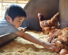 「卵鶏ツアーin榛名」