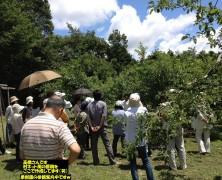 養鶏法研鑽会開催中in飯田 その3