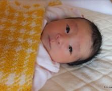 杉本幸三・藍夫妻第一子誕生