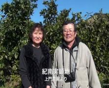 紀南実顕地より【ビデオ】
