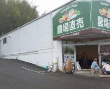 ファーム名古屋店の今  ~7月10日オープンにむけて~