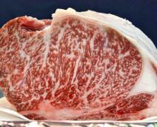 いい肉の日、生肉販売スタート【豊里ファーム】