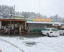 大雪の中の内部川日曜市