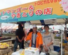 コスモス祭り in 岡部