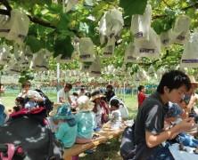 春日山8月農場体験