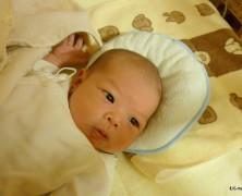 古坊俊博・依子夫妻(春日山実顕地)第三子誕生