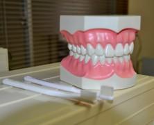 虫歯予防Q&A【四條先生】