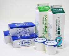 【新製品】ヨーグルトの紹介