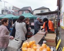 【多摩】3月のファーム町田店