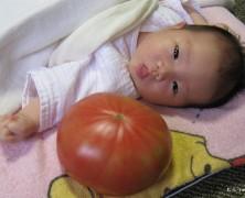 樋口幸七・和佳夫妻第一子誕生
