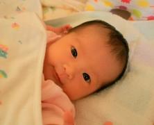加藤暁・承子夫妻 第一子誕生