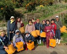 昨日は衣生活全員で六川ミカン収穫へ行ってきました