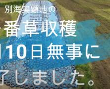 牧草収穫交流(別海)