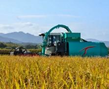飼料稲の収穫始まる【豊里】