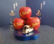 りんご収穫終了!