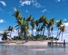 大海に浮かぶ孤島としての実顕地